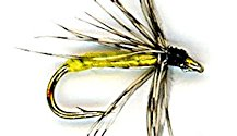 Partridge and Yellow Soft Hackle fly pattern