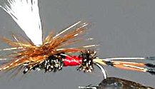 Royal Coachman Parachute Dry fly pattern