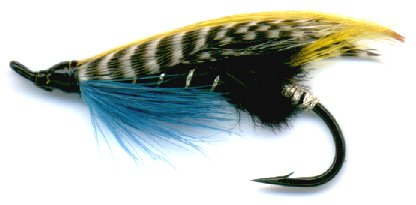 The Blue Charm feather wing Double Hook Salmon Fly
