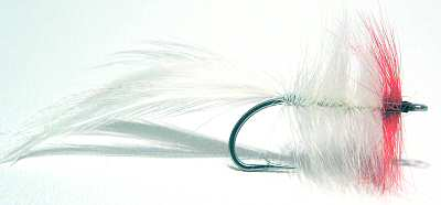 White and red saltwater seaducer fly fishing flies
