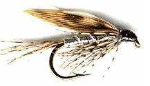 Silver March Brown Wet fly pattern