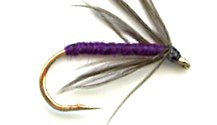 Snipe and Purple Soft Hackle fly pattern