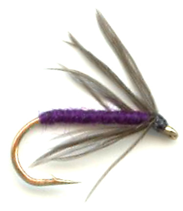 snipe and purple soft hackle wet fly for trout fishing, Fly Fishing Bait