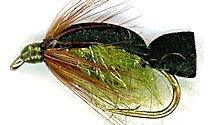 Swimming Caddis Pupa Fly fly pattern