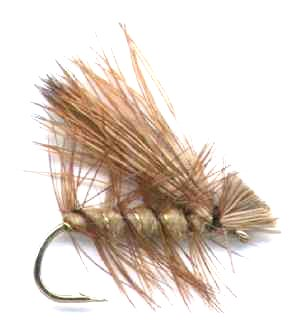 catch rainbow trout with a Tan Elk Hair Caddis fly
