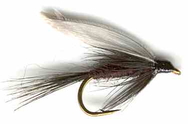 The Black Gnat Wet Fly for trout fishing