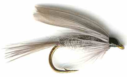 The Blue Dun Wet Fly for trout fishing