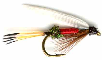The Royal Coachman Wet Fly for trout fishing