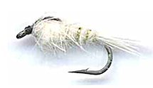 White Gold Ribbed Hare's Ear Nymph fly pattern