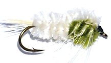 White and Olive Montana Stonefly Nymph fly pattern