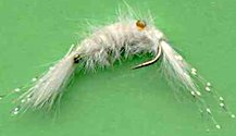 White Scud fly pattern